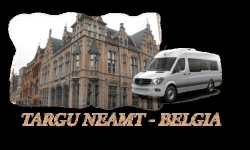Transport persoane Targu Neamt Belgia