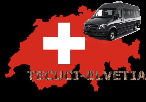 transport persoane tecuci elvetia